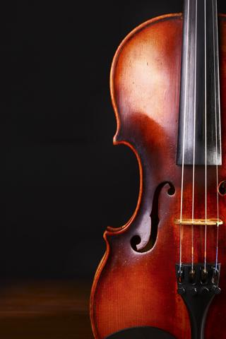 violin320